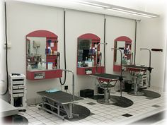 High-End Dog Grooming Salons | Business Plans: So You're Interested in Pet Salons, Shops & Spas