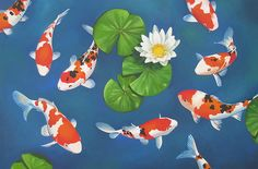 Koi Giclee Canvas Print with Acrylic Paint by artelo on Etsy Koi Painting, Acrylic Painting Canvas, Watercolor Paintings, Fish Paintings, Koi Art, Fish Art, Happy Wallpaper, 4th Grade Art, Line Art Design