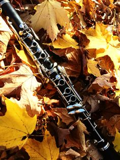 Clarinet photography                                                                                                                                                      More