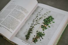Book Garden Gastronomy Book, Garden, Books, Garten, Livres, Lawn And Garden, Outdoor, Libri, Tuin