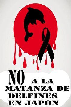 No a la matanza de delfines en Japon