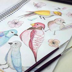 Watercolor birds, ilustração utilizada posteriormente para estampa feminina #watercolor #aquarela #passaros #bird #silk