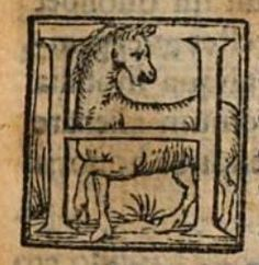 lettrine cheval 1557/ initial letter horse 1557
