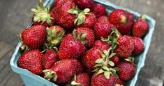 Keep Your Strawberries Fresh. Farmer Reveals His One Expert Tip To Avoid Spoilage