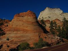 Zion Canyon - The road through here is amazing!