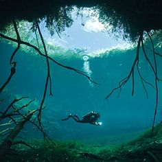 Cave Diving in Mexico: Tulum, Mexico