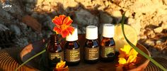 4 DIY Recipe with Essential Oils for this Holiday Season