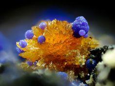 Stewartite(Mn++Fe+++2(PO4)2(OH)2•8(H2O)), Phosphosiderite(Fe+++PO4•2(H2O))