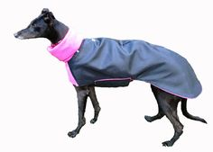 KFEpetgear - Winter Coat - Sizes according to back length - Multiple colors - Price may vary $60 - $80