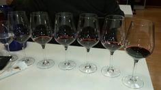 Copas de Vino con El NIdo