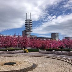 Stony Brook University, Res Life, Long Island, Willis Tower, State University, Buildings, College, New York, Architecture