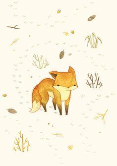Little fox ~ Pequeño zorro