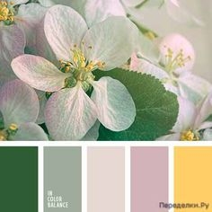 Best Pastel Color Combinations for Fabrics To Attract More People Purple Color Palettes, Green Color Schemes, Green Colour Palette, Color Combinations, Spring Color Palette, Pantone, Design Seeds, Find Color, Color Balance