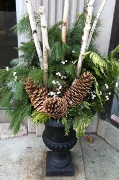 Pinecones & birch (but not in this kind of container)