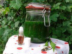 Kühlender Roll-on für Mückenstiche - heimatblume kulinarisches aus dem kochergarten