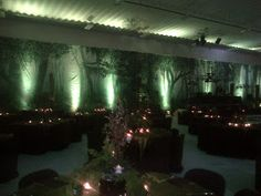 "The Prom 2012 theme was ""Enchanted Forest"". What theme are you hoping to have for Prom Start thinking of."