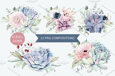 Oh my Succulents watercolor set - Illustrations - 2