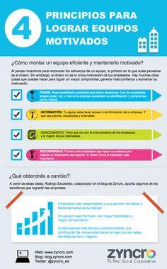 4 principios para lograr equipos motivados vía: www.zyncro.com #trabajo #rrhh #motivacion