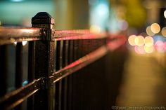 Fenced In Bokeh, Fence, Photos, Pictures, Boquet