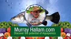 Discover Aquaponics Video Series