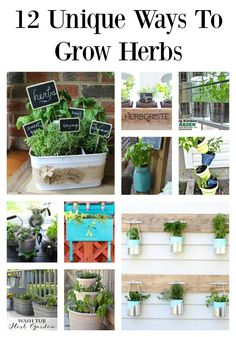 12 Fun, Unique and Budget Friendly Ways to Grow Herbs | Tastefully Frugal (scheduled via http://www.tailwindapp.com?utm_source=pinterest&utm_medium=twpin&utm_content=post54444196&utm_campaign=scheduler_attribution)