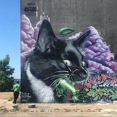 street art Braga_last_one & Delir_bdr & Sandrotartiste, France