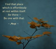 """""""Find that place which is effortlessly at rest within itself.  Be there - Be one with that"""". -Mooji"""