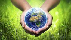 Polpa Moldada - Embalagens Sustentáveis:  As 100 empresas mais sustentáveis do mundo em 201...