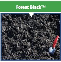 Seaside Mulch Offers High Quality Bagged Forest Black For Delivery Our Whole Holds Its Color 4 Times Longer Than Cedar