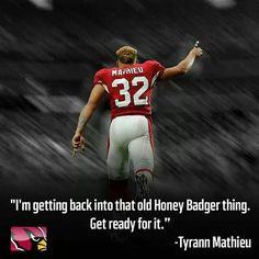 Honey badger football player cardinals