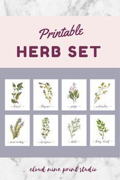 Free Set Of 6 Spring Herb Printables Crafts Diy Home Decor Cheap Home Decor Kitchen Decor