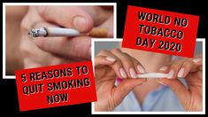 Reasons To Quit Smoking, Dental Aesthetics, World No Tobacco Day, Dental Center, Dental Surgery, Dentist In, Preston, Smoke, Cardiff