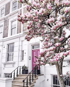 Managed to find a magnolia that was still in bloom in Notting hill Spring Aesthetic, Flower Aesthetic, Beautiful Homes, Beautiful Places, Beautiful Pictures, Jolie Photo, Exterior Design, Beautiful Flowers, Scenery