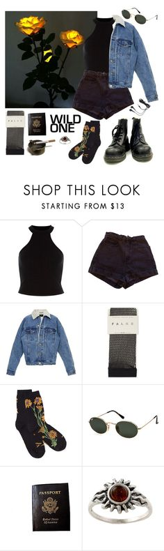 """""""wild one"""" by shining-like-gun-metal ❤ liked on Polyvore featuring American Eagle Outfitters, American Apparel, Falke, Ray-Ban, Passport and Amber Sun"""