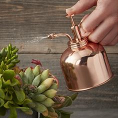 Keep humidity-loving plants happy with our copper mister. Sturdy craftsmanship, sleek styling and ease of use make it an excellent addition to indoor gardens and terrariums, as well as a stunning gift.
