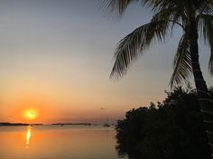 Easy days in the Keys... #islandlife #floridakeys #islamorada #sunset #ocean #keyslife #relaxing #amazing #awesome #rumpunch #margaritas #happyhour #islandlife #island #southflorida #lorelei #palmtrees #sailboat #calm #sundown #cabanabar #loreleicabanabar by mastersryannn