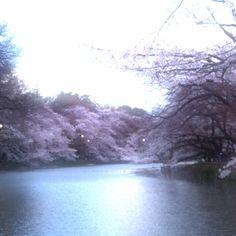Inogashira Park in Tokyo