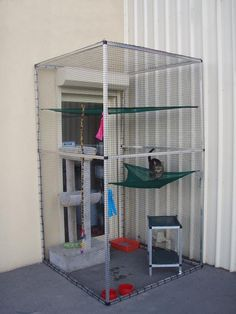 Cat Care Indoors - Cats are often thought to be low-maintenance pets. Diy Cat Enclosure, Outdoor Cat Enclosure, Cage Chat, Low Maintenance Pets, Cat Run, Cat Playground, Cat Condo, Outdoor Cats, Space Cat