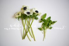 Petite Flower + Herb Arrangements | Cupcakes & Cashmere: white anemones and mint