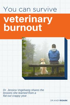 Veterinary burnout is real, but you can survive.