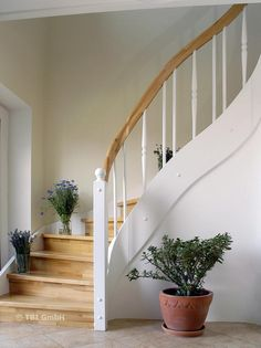 Solid wood staircase, closed The Effective Pictures We Offer You About curved S. , Solid wood staircase, closed The Effective Pictures We Offer You About curved Stairs A quality picture can tell you many things. Home, Farmhouse Remodel, Sweet Home, New Homes, House, Wood Staircase, Farmhouse Renovation, Wood Stairs, Wooden Staircases