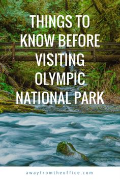 Things to Know Before Visiting Olympic National Park in Washington state, USA.maybe you should read this Oh The Places You'll Go, Places To Visit, Nationalparks Usa, Voyage Usa, Utah, Grand Canyon, Us National Parks, Olympic National Park Camping, Olympic National Forest