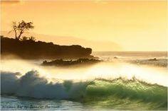 Waimea Bay, Oahu Waimea Bay, North Shore Oahu, Vintage Tiki, Hawaiian Islands, South Pacific, Snorkeling, Places Ive Been, Surfing, Military Brat