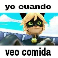 Memes de Miraculous Ladybug....Chat Noir