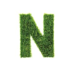 "Naturally the letter ""N"" would be made of grass!"