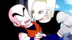 Krillin & Android 18