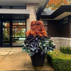 Dirt Simple | Gardening and Landscape Blog by Deborah Silver Outdoor Christmas Planters, Christmas Urns, Evergreen Landscape, Ornamental Cabbage, Fall Containers, Faux Grass, Italian Garden, Side Garden, Fall Plants