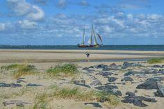 Een ontdekkingstocht op magisch Vlieland - door blogger Anita