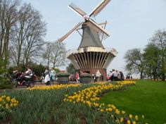 TOP WORLD TRAVEL DESTINATIONS: Keukenhof gardens Netherlands