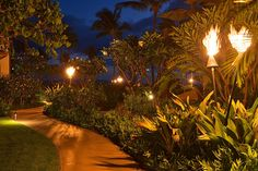 Walkway With Tiki Torches